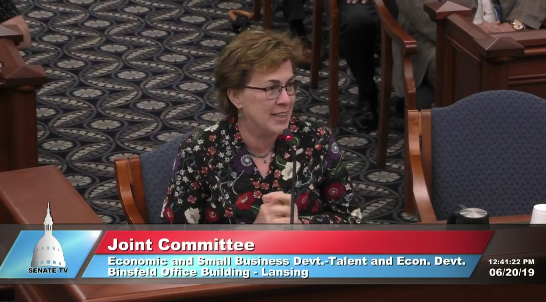 Michelle Miller-Adams testifies before the Michigan Senate on debt-free community college Promise scholarship programs